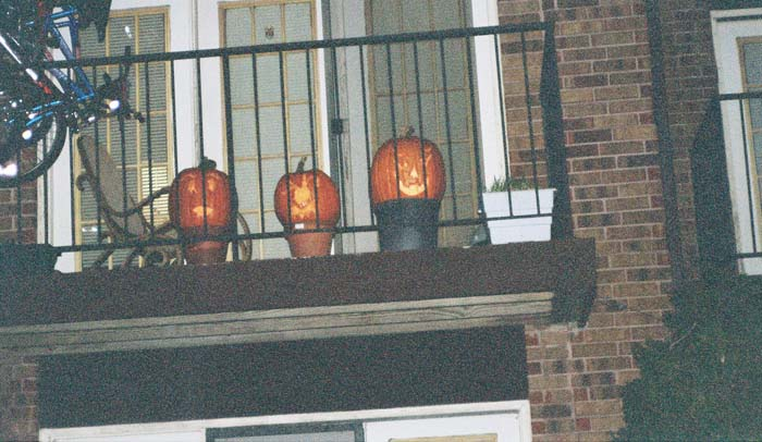 pumpkins-outside (1)