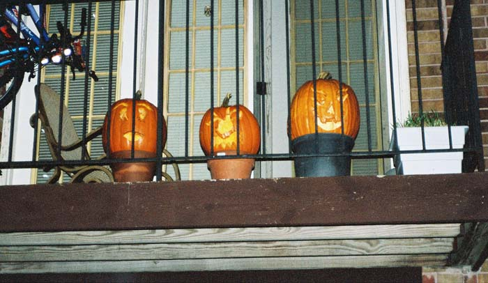 pumpkins-outside (2)